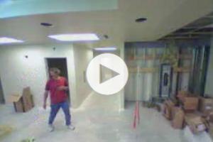 Indoor VidALARM Color Camera